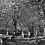 The graveyard from St. Nicholas Kirk